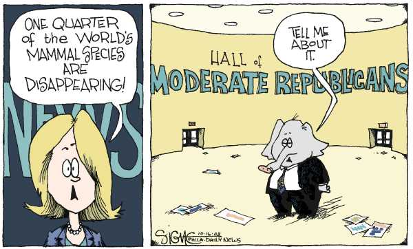 Editorial Cartoon by Signe Wilkinson, Philadelphia Daily News on McCain Proposes Plan