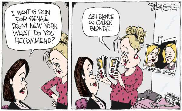 Political/Editorial Cartoon by Signe Wilkinson, Philadelphia Daily News on Hillary's Sentate Seat Filled
