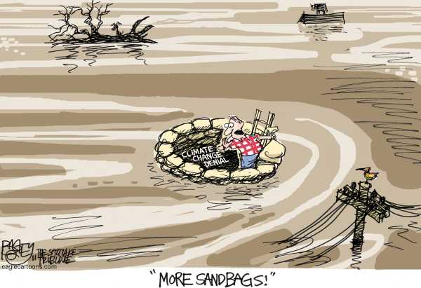 Political/Editorial Cartoon by Pat Bagley, Salt Lake Tribune on Mississippi River Overflows